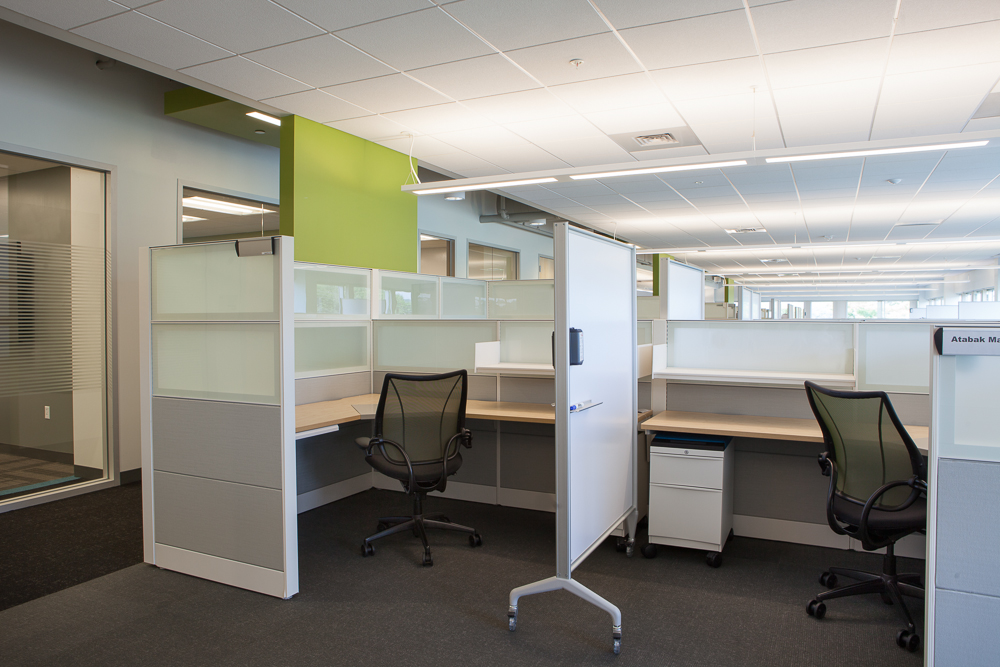 Separate and private workstations. Image © Neil Alexander for Visnick & Caulfield